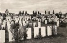 Zonnebeke: Tyne Cot Cemetery