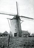 Pollinkhove: Machuutmolen in 1960
