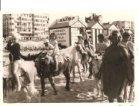De Panne: ezeltje rijden op het strand