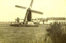 Pollinkhove: de molen van Bernard Vienne
