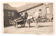 Voormezele : Bierronde met paard en kar