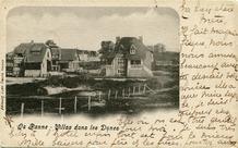 De Panne: de eerste cottages in de Bortierlaan