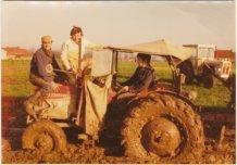 Elverdinge: landbouwleven
