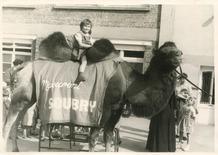 De Panne: Katrien Vanhoucke op de Soubry kameel