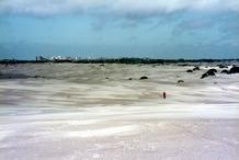 De Panne: de centrale zandvlakte in het natuurreservaat