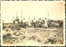 Handzame: gedwongen werk levert magere oogst op