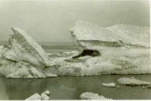 De Panne: de zee bevroren