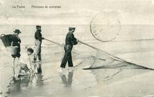 De Panne: twee kruiers verschalken garnalen