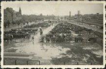 Ieper: eerste veemarkt maandag 18 augustus 1941