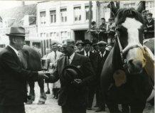 Poperinge: burgemeester overhandigt beker paardenprijskamp 1951