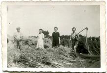 Lo: koolzaad dorsen met de vlegel in 1944