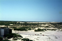 De Panne: ten westen, één groot duinengebied