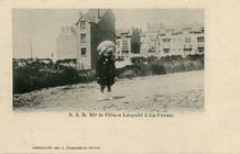 De Panne: jonge prins Leopold promoot jonge badplaats
