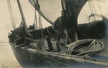 De Panne: vissers turen naar de horizon