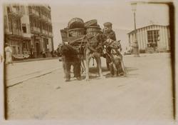De Panne: jong baasje met hondenkar nabij de Zeedijk