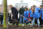 Kroonprins Willem Alexander plant ter gelegenheid van de aanstaande troonswissel…