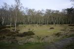 Van Leydenhof, natuurgebied bij Ockenburgh, beheerd door het Zuid-Hollands Lands…