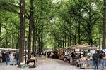 Lange Voorhout, antiek- en boekenmarkt op het schelpenpad; vervaardiger: Gispen,…