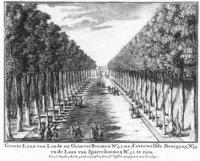 De Grote Laan op Zorgvliet met linde- en geneverbomen.