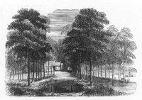 De Leidsestraatweg in het Haagse Bos met links een rij tentjes cq. huisjes.