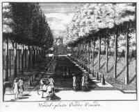 De Grote Laan op Zorgvliet met linde- en geneverbomen met r. het hoge terras parallel aan de Laan. H ...