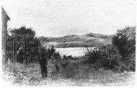 Duinaardappelveld bij Frankenslag vlak achter Villa ' Nieuw Duinbed ' aan de Scheveningseweg