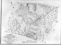 Het plattegrond van de Scheveningse Bosjes in 1804.