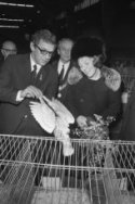 """Prinses Beatrix opent 75e kleindiertentoonstelling """"Avicultura"""" in Houtrusthalle…"""