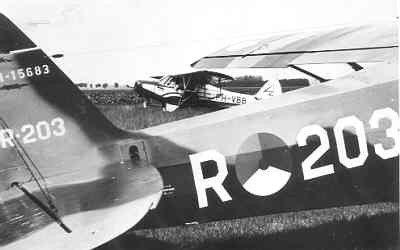 Piper L21-A Super cub