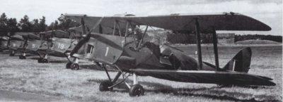 De Havilland DH.82A Tiger Moth, formatie op de grond in RAF-kleuren.