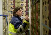 Medewerker noteert gegevens op dozen met druiven bij Kloosterboer...