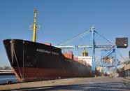 Zeeschip aan de bulkterminal bij Verbrugge Terminals in de...