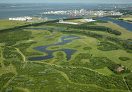 Natuurgebied Braakman-Noord. Op de achtergrond de Braakmanhaven, Dow...