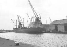 Lossen van een zeeschip aan de kade van de Noorderkanaalhaven bij Aug....