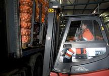 Lossen van een vrachtwagen met uien bij Kloosterboer Vlissingen.