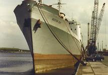 Het schip Reefer Rio in de Bijleveldhaven.