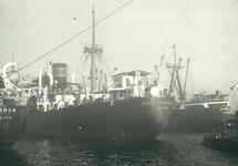 Zeeschepen en sleepboot in de haven van Terneuzen. Exacte locatie in...