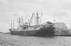 Zeeschip aan de kade van de Zuiderkanaalhaven of Zevenaarhaven.
