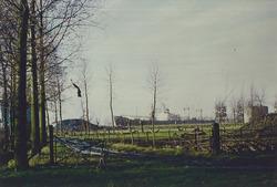 Landbouwgronden nabij de Zevenaarhaven.