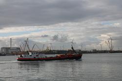 Zicht op de haven vanaf het calamiteitensteiger in de Scaldiahaven....