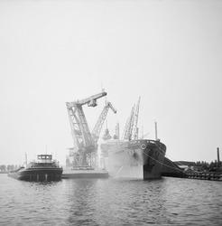 Overslag met drijvende kranen in de Zevenaarhaven.