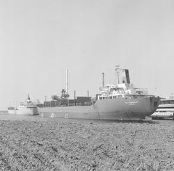 Zeeschip aan de kade bij de Nederlandse Stikstof Maatschappij (NSM) te...