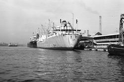 Zeeschepen aan de kade bij de Nederlandse Stikstof Maatschappij (NSM).