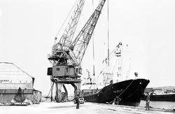 Zeeschip aan de kade van de Zuiderkanaalhaven bij de loodsen en kranen...