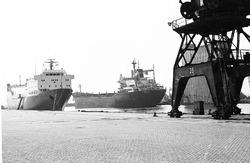Zeeschepen aan de kade van de Zevenaarhaven.