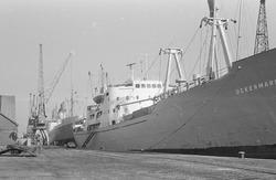 Zeeschepen aan de kade van de Zuiderkanaalhaven.