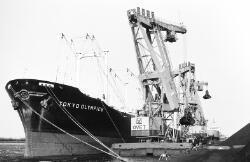 Lossen van het zeeschip Tokyo Olympics met drijvende kranen aan de...