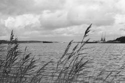 Scheepvaart op het kanaal ter hoogte van de Massagoedhaven. Geheel...