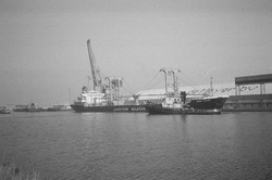 Zeeschip en sleepboot aan de bulkterminal van Aug. de Meyer in de...