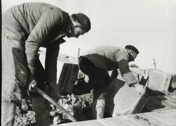 Zetten van blokken in de glooiing van de Sloehaven ca. 1970